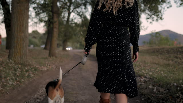 stockvideo's en b-roll-footage met mooie jonge vrouw die met hond beagle door de rivier loopt - lood