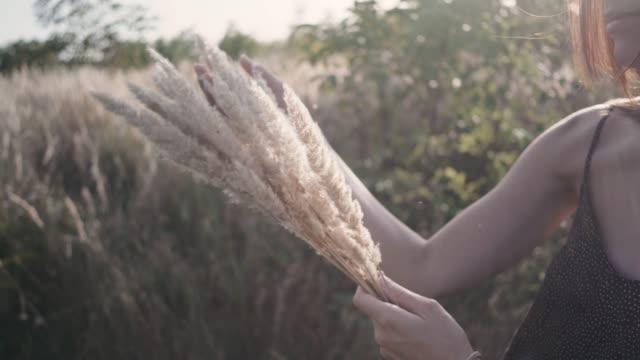 美麗的年輕女子走在田野裡收集一束鮮花和小穗。日落或日出時在草地上迷人的女性肖像 - {{asset.href}} 個影片檔及 b 捲影像