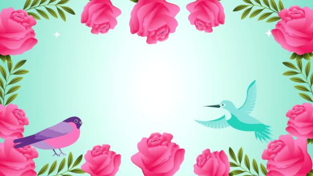 beautifull flowers garden with birds scene video