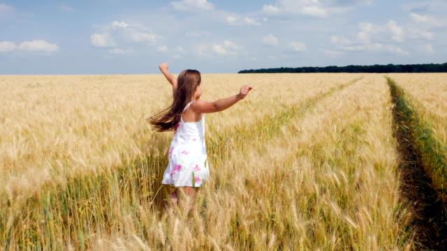 Beauty girl running on yellow wheat field video