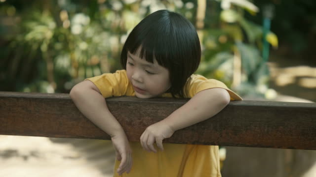 beauty in nature : 2-3 years baby girls - viaggio d'istruzione video stock e b–roll