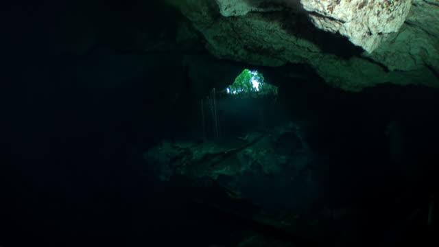 Schoonheid van grot in onderwater Yucatan Mexico cenotes. video