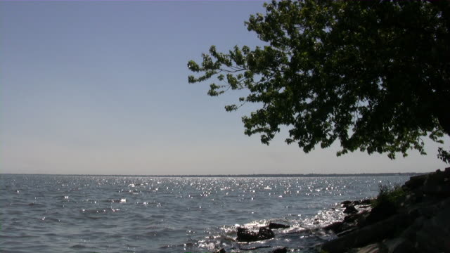 Beauty of Nature. USA, Northwest, Michigan. Great Lakes area. Summer. video