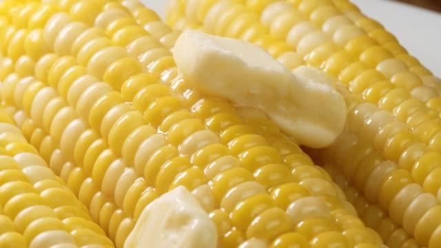 vídeos de stock, filmes e b-roll de foto da beleza do milho cozinhado fresco coberto com manteiga de derretimento. - gordura