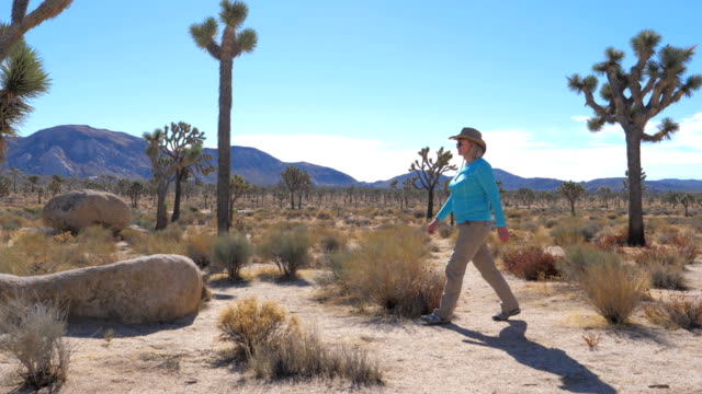 Beauty Woman In A Cowboy Hat Goes On A Mojave Desert, Stones And Joshua Tree video