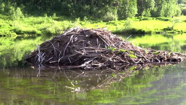 Maison sur le lac Beaver - Vidéo