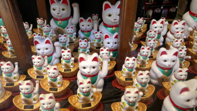 vídeos de stock e filmes b-roll de beckoning cat figurines in a store window of chinatown in san francisco - wish