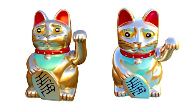 vídeos y material grabado en eventos de stock de hd: hacer señas cat - porcelana china