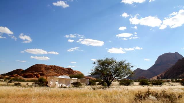 cu bettwäsche auf eine linie in afrika - afrikanische steppe dürre stock-videos und b-roll-filmmaterial
