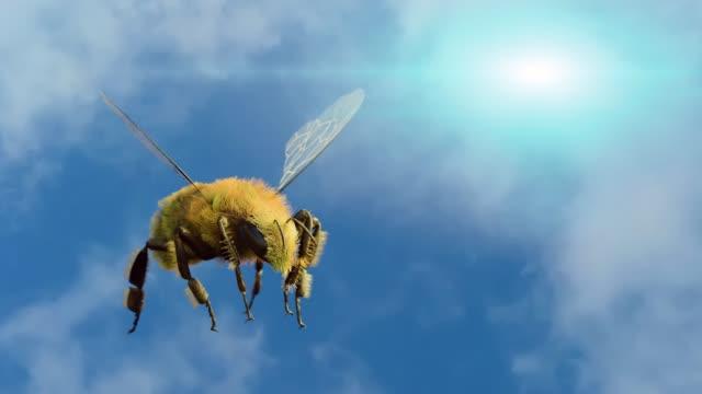 bienen fliegen am himmelshintergrund rendern 3d - wespe stock-videos und b-roll-filmmaterial