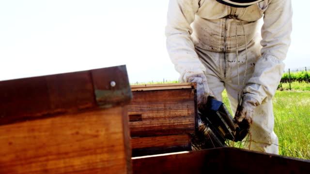 Beekeeper Smoking The Bee Hive Video