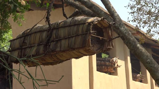 Beekeeping With Traditional Wicker Basket, Log and Skep Beehive