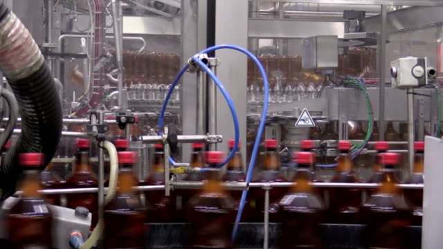 Beer bottles on conveyer belt in factory being filled video
