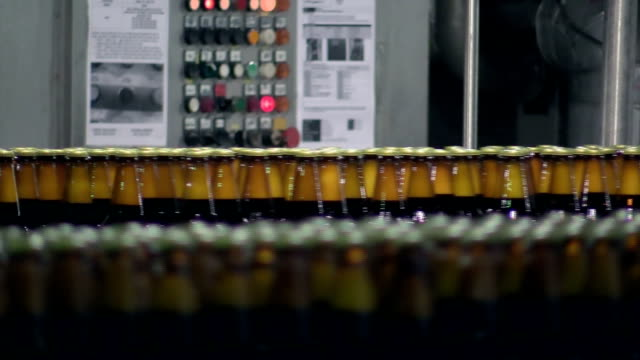 Beer bottles on conveyer belt in factory video
