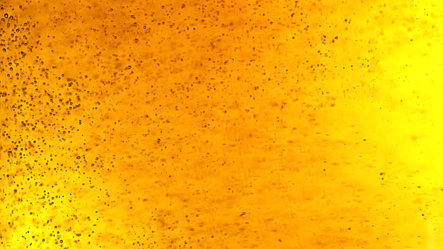 Beer bubbles. Extreme close up video