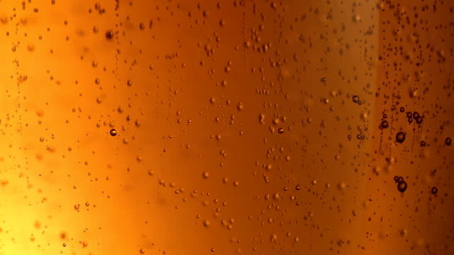 Beer bubbles extreme close up video