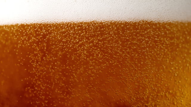 slo mo beer bubbles in a glass - birra video stock e b–roll
