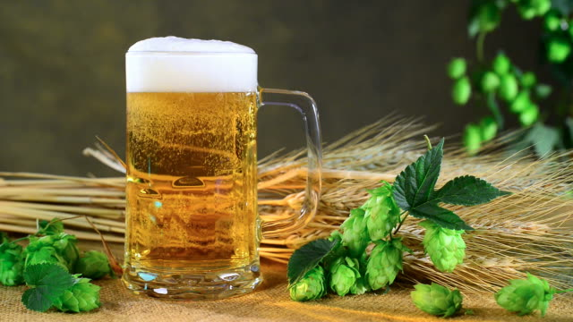 Beer Glass and Hops Pouring beer into a glass. Zoom in. lager stock videos & royalty-free footage