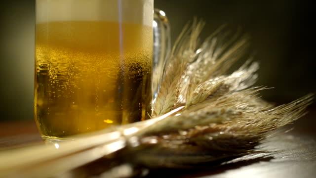 beer glass and sheaf of barley. foam is rising up. - tap water filmów i materiałów b-roll