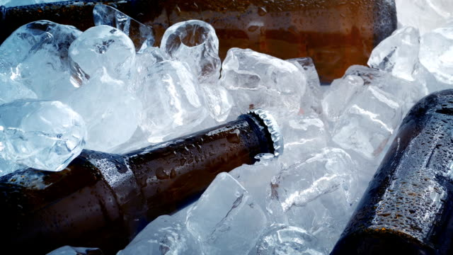 Beers Chilled In Lots Of Ice Cubes video