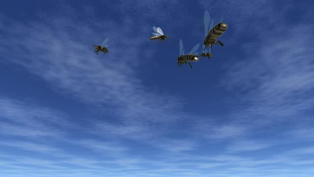 Bienen-unter blauem Himmel – Video
