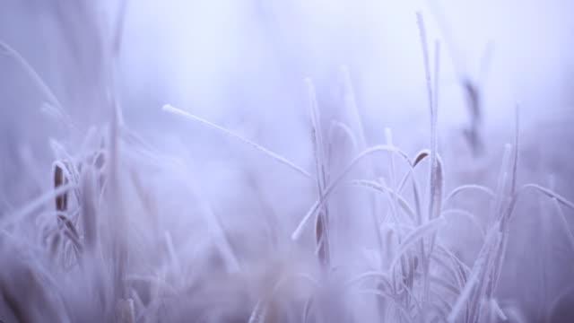 beginning of winter - donmuş su stok videoları ve detay görüntü çekimi