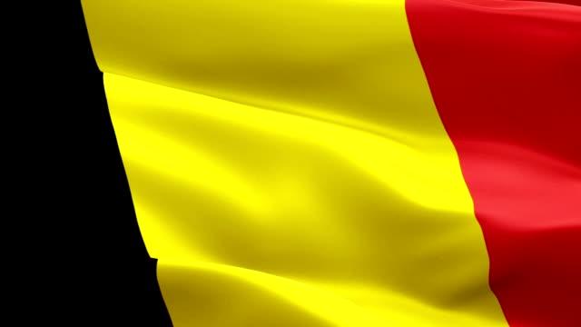 bandiera belga primo piano 1080p full hd 1920x1080 riprese video che sventolano nel vento. bandiera nazionale belga 3d che sventola. segno del belgio animazione loop senza soluzione di continuità. bandiera belga risoluzione hd sfondo 1080p - belgio video stock e b–roll