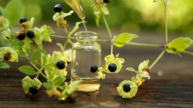 belladonna eterisk olja i vacker flaska på bordet - amaryllis bildbanksvideor och videomaterial från bakom kulisserna