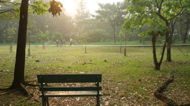 公園のベンチとサイクリング - ベンチ点の映像素材/bロール