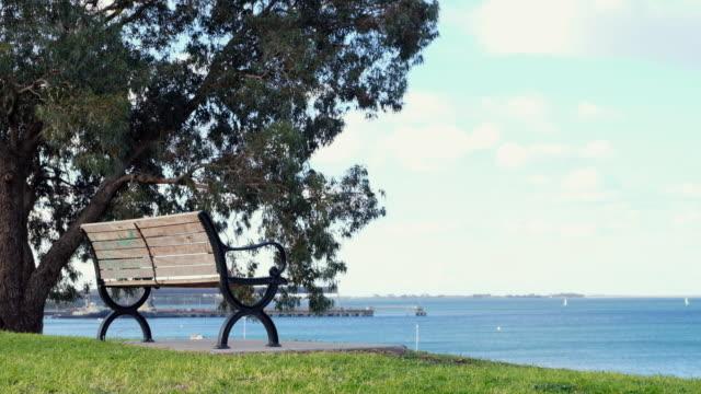 Bench beside big tree in park.