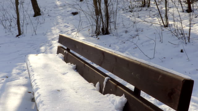 Bench covered with snow in winter video