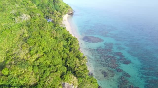 beqa island in fiji - cespuglio tropicale video stock e b–roll