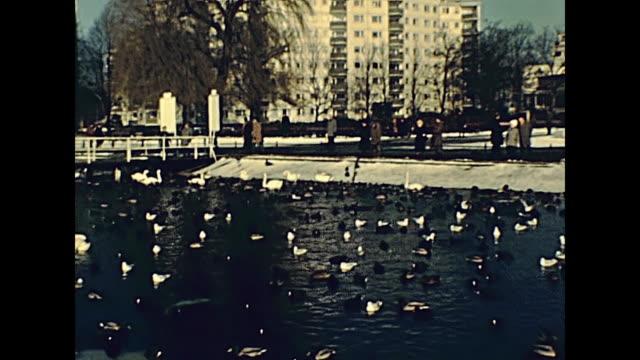 vídeos de stock e filmes b-roll de berlin park seagulls in 1970s - berlin wall