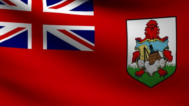 Bermudas flag. video