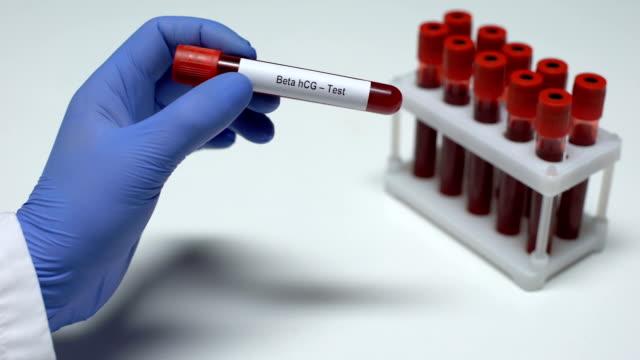 Beta-hCG-Test, Arzt mit Blutprobe in der Röhre, Laborforschung, Gesundheitscheck – Video