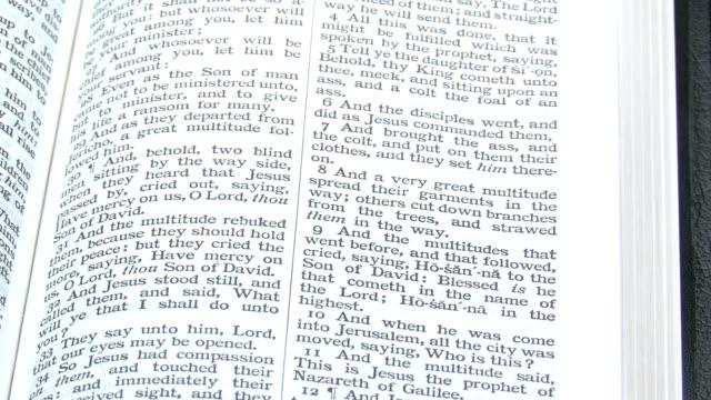 KJV Bible On Palm Branches video