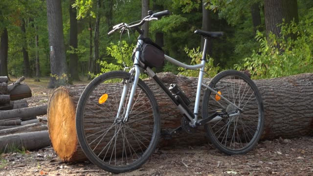 A bicycle is propped against a log in a countryside cyclist handlebar stock videos & royalty-free footage
