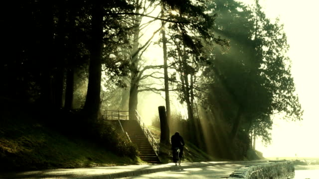 Bicycling Through The Mist video