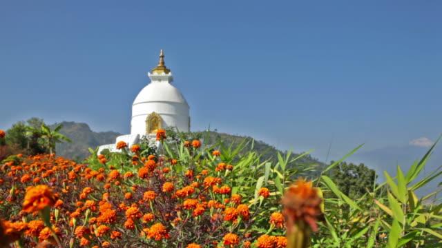 biddhist-tempel - pagode stock-videos und b-roll-filmmaterial