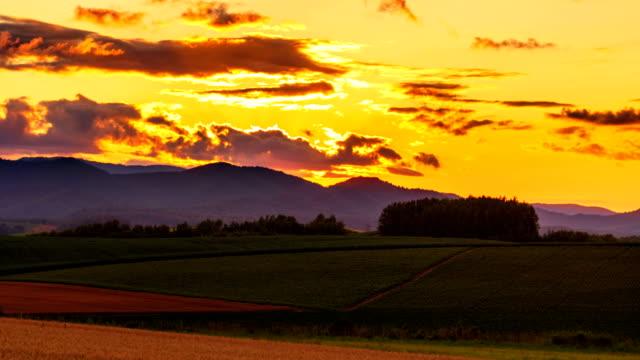 美瑛の丘ビュー パッチワーク道路日没時間経過 4 k - 美瑛北海道のフィールドの丘に沈む夕日の時間経過 - 北海道点の映像素材/bロール