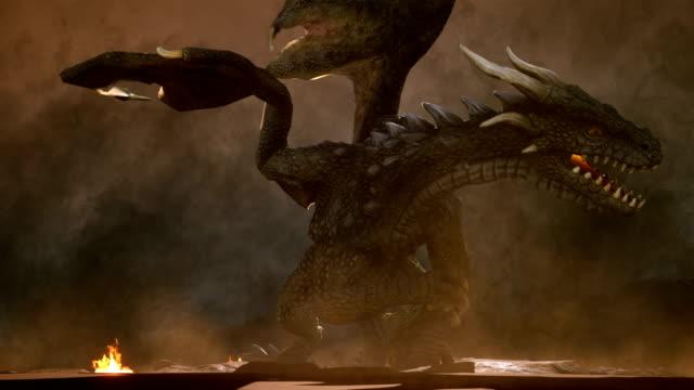 ein großer wütender drache in der wüste kämpft sich gegen seine feinde. 3d-animation fantasy-hintergrund. - drache stock-videos und b-roll-filmmaterial