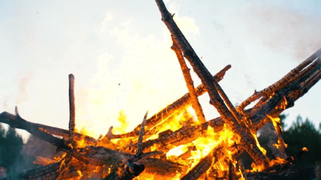 ormanda geceleri dalları yanmak dan büyük kamp ateşi - hayvan avlama stok videoları ve detay görüntü çekimi