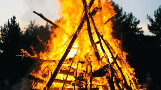 großes lagerfeuer die äste brennen in der nacht im wald auf dem hintergrund der menschen - anmut stock-videos und b-roll-filmmaterial