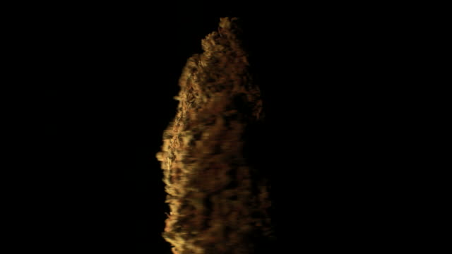 big cannabis bud rotating 2 big cannabis bud rotating 2 hashish stock videos & royalty-free footage