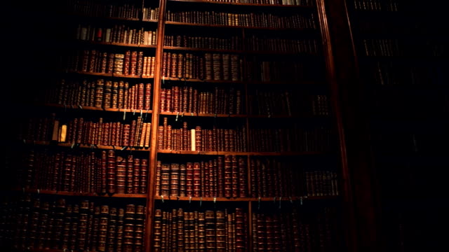 Big collection of old uncognizable books. FullHD steadicam shot video