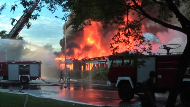большой пожар - сила природы стоковые видео и кадры b-roll