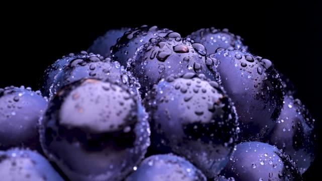 big grapes. - icon set healthy video stock e b–roll