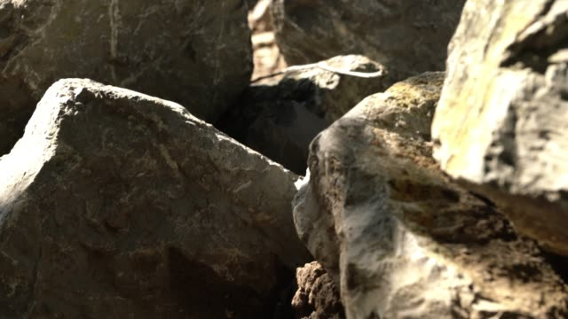 vídeos de stock, filmes e b-roll de rocha cinzenta grande com a máscara do sol - penedo