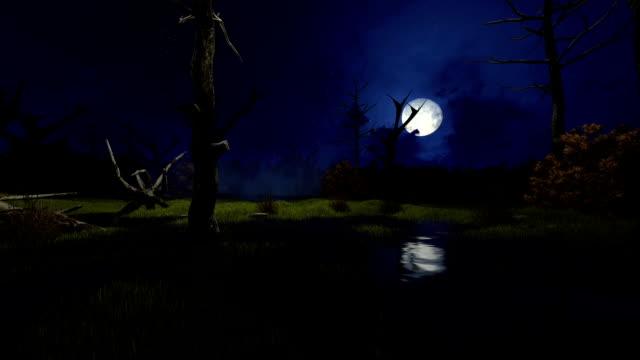 Big moon above creepy swamp at misty night video