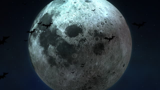 Big moon and Bats at the Halloween midnight [loop] Halloween night! It will full moon. There are Big full moon and many bats in midnight sky. Moon shadows will move and full moon. Mysterious and Eternity! ominous stock videos & royalty-free footage